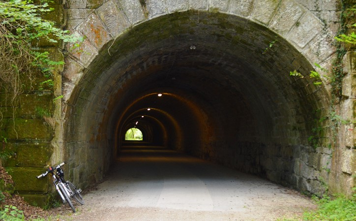 Tunelpea